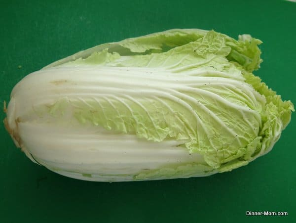 head of Chinese Napa Cabbage