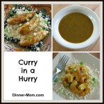 Curry in a Hurry Sauce for Shrimp or Chicken