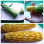 Microwave Corn on the Cob in Husk for Slip Away Silk!