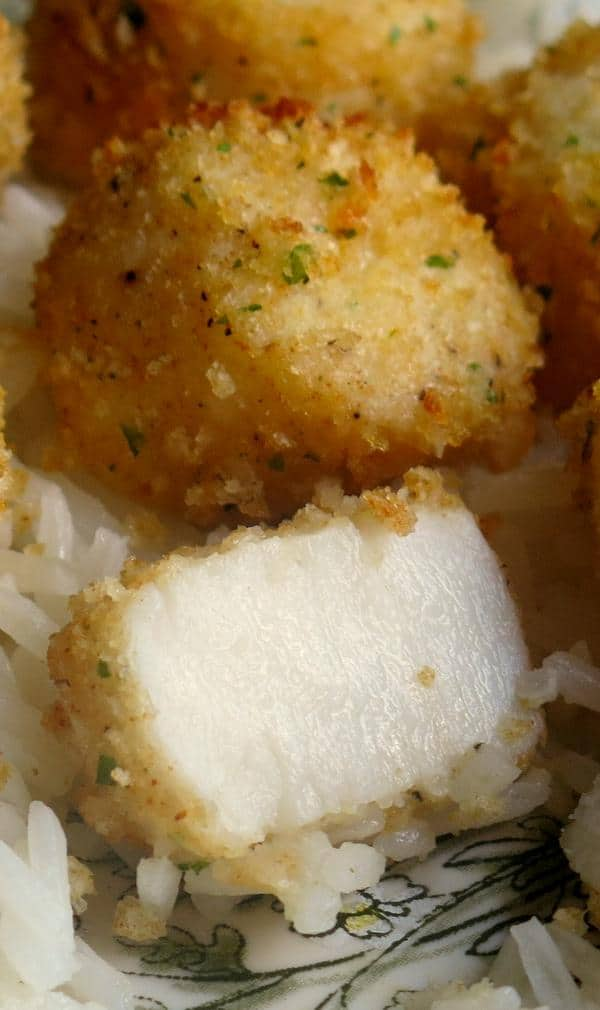 Broiled Scallops with a Parmesan Crust