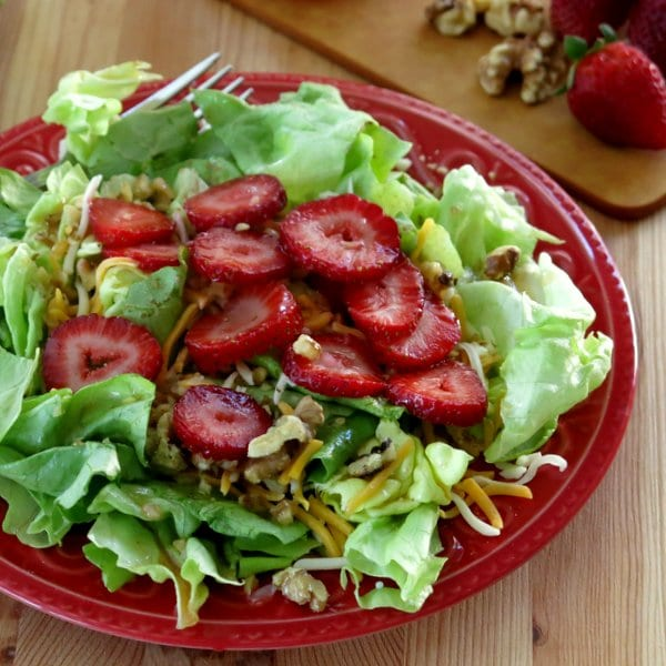 Red Wine Vinaigrette Dressing over Salad Greens  on plate