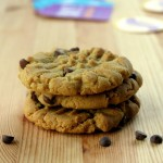 Sunflower Seed Butter Cookies with Chocolate Chips