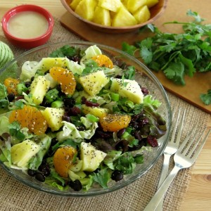 Carribean Salad with Honey Lime Dressing