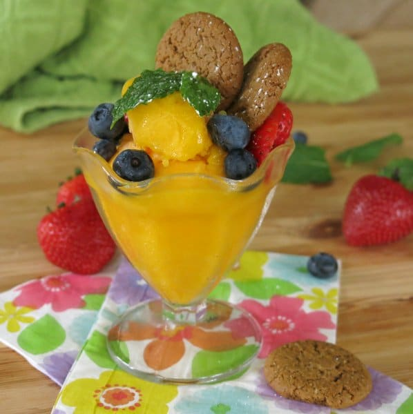Easy Mango Sorbet Recipe topped with ginger snaps, blueberries and mint