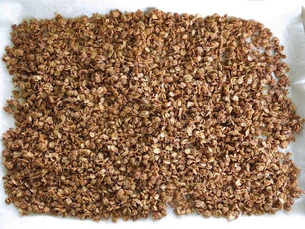 Partially baked granola on a baking sheet