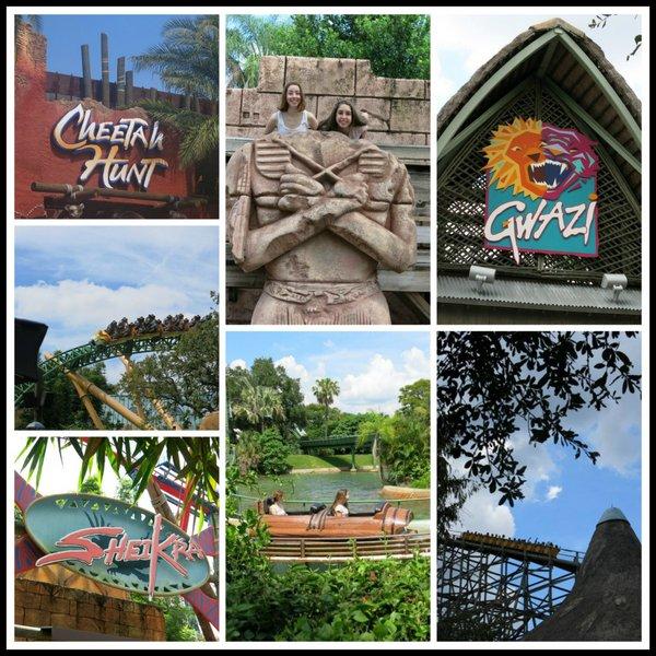 Busch Garden Rides Collage