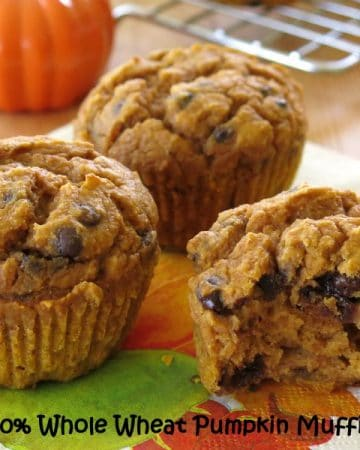 Whole Wheat Pumpkin Muffin Recipe with Chocolate Chips