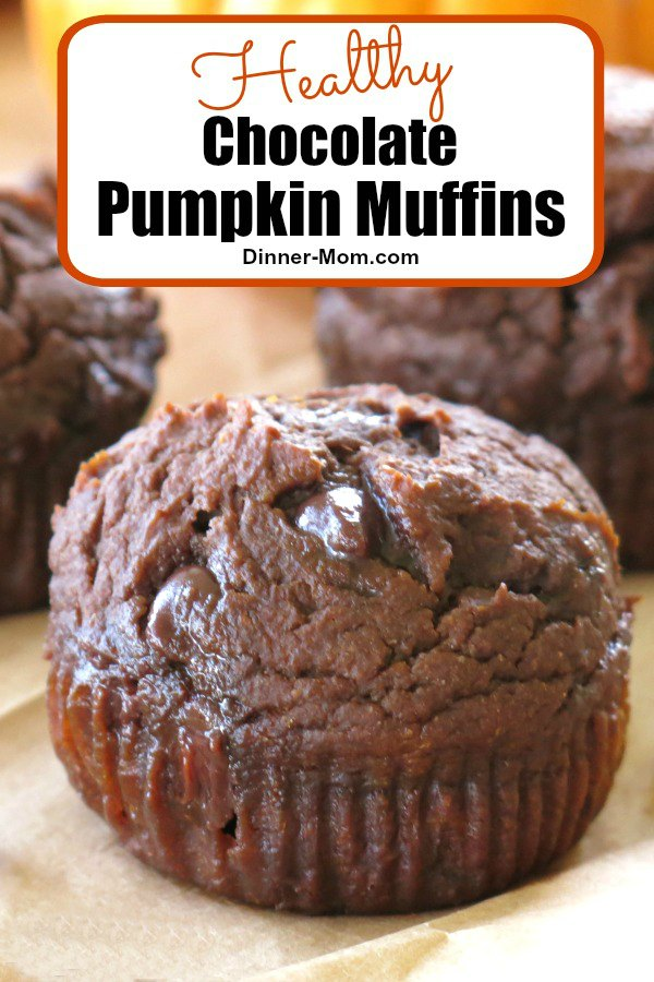 Healthy Chocolate Pumpkin Muffins are made with whole grains, no oil, extra protein, lots of pumpkin and are absolutely irresistible! A twist on our super popular whole wheat pumpkin muffin recipe! #pumpkin #muffins