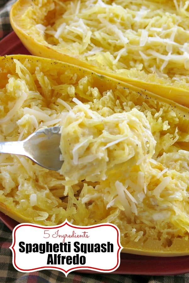 Spaghetti Squash Alfredo is lower-carb, gluten-free, healthy and easy to make with just 5 ingredients in this recipe. #spaghettisquash #lowcarbdiet #glutenfreediet