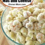 Shrimp Mac and Cheese Pin