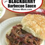 Slow Cooker Pork in Blackberry Barbecue Sauce