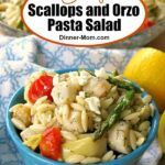 Scallops and Orzo Pasta Salad Pin