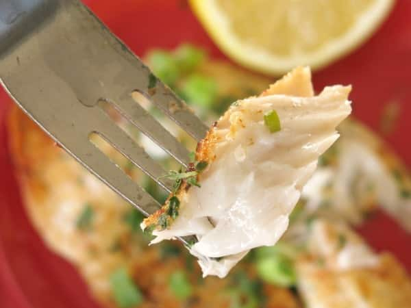 Bite of Lemon Baked Tilapia on Fork
