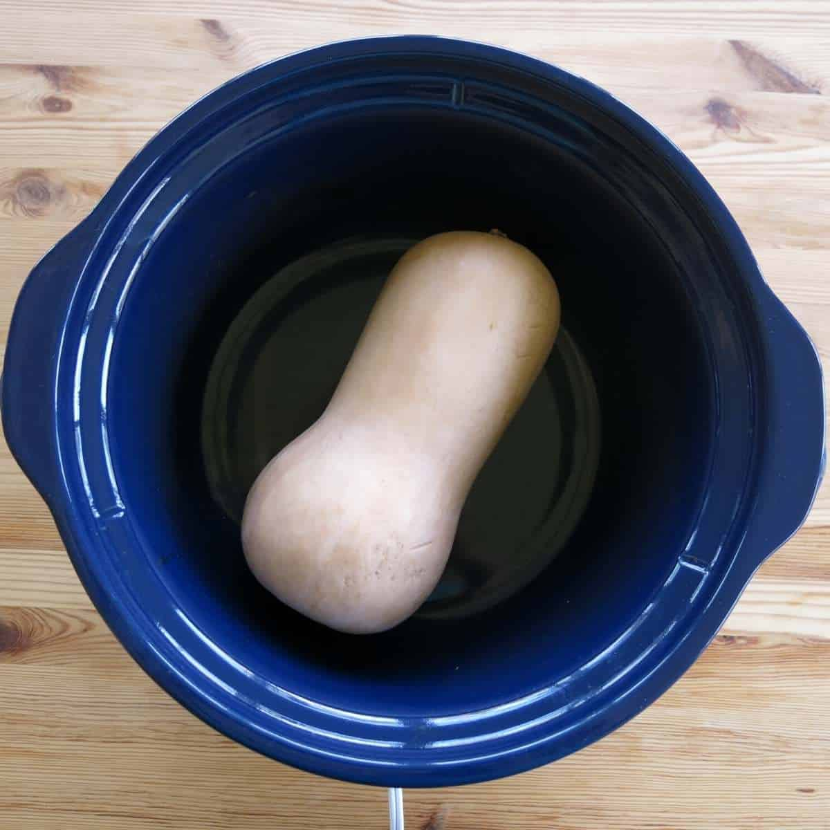 A whole butternut squash in a slow cooker with the cover off.