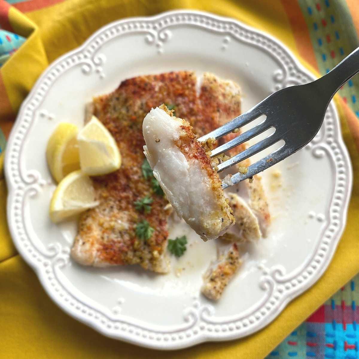 Fork com uma picada de filete de corvina em flocos.