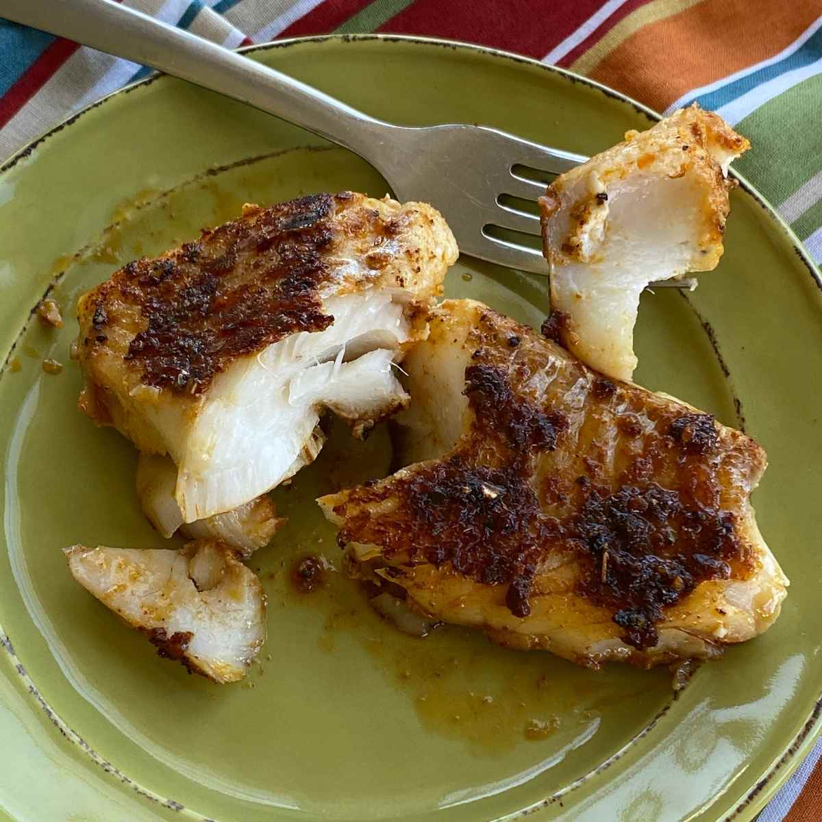 Blackened cod fish fillet on a plate with fork holding a bite to see white flaky flesh.