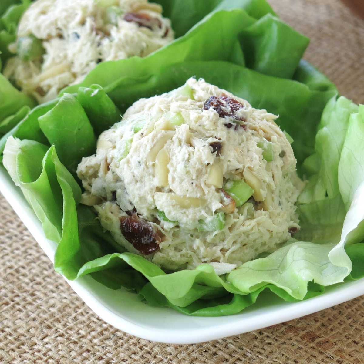 Slow cooker chicken salad with Greek Yogurt, almonds and celery on a lettuce leaf.