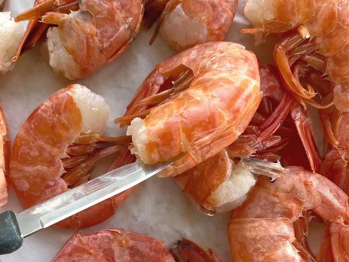 Paring knife inserted into the back of shelled wild red Argentine prawn.